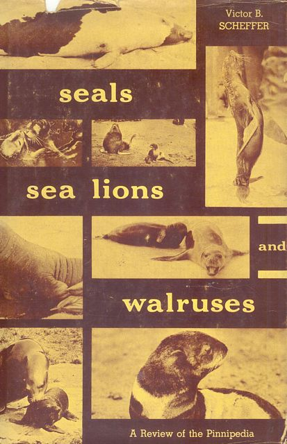 Seals, Sea Lions and Walruses.