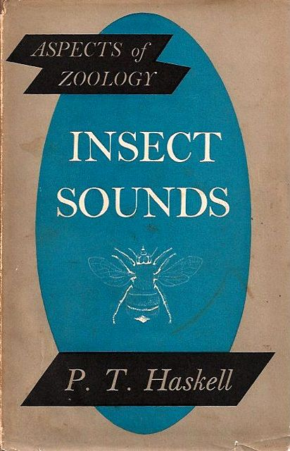 Insect Sounds.
