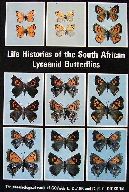 Life Histories of the South African Lycaenid Butterflies.