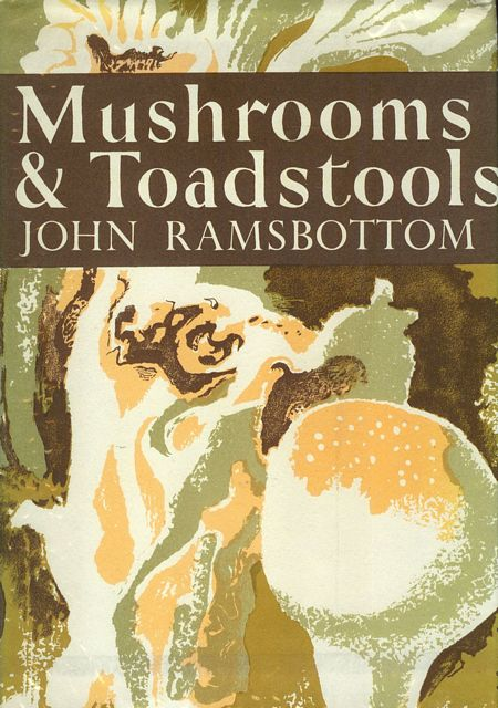 Mushrooms and Toadstools.