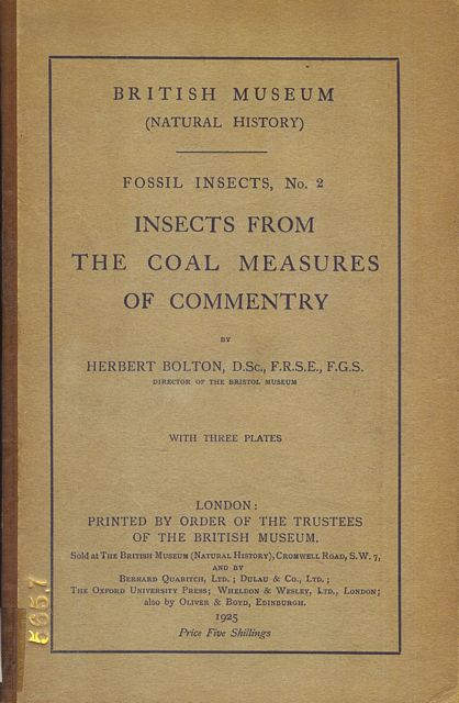 Insects from the Coal Measures of Commentry.