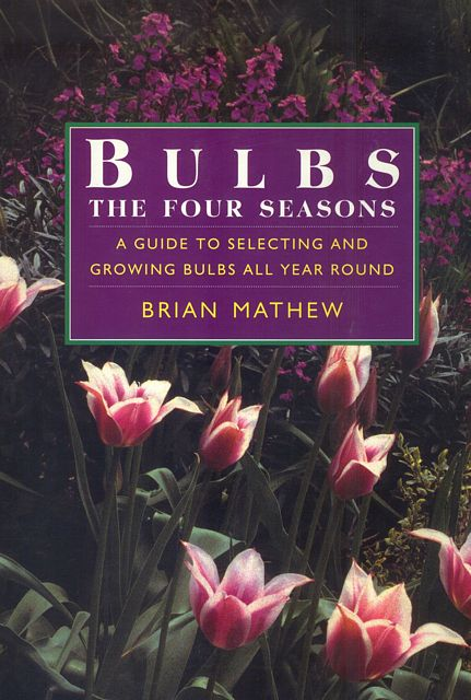 Bulbs. The Four Seasons.