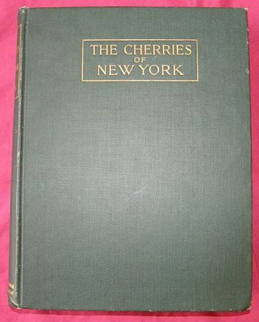The Cherries of New York.