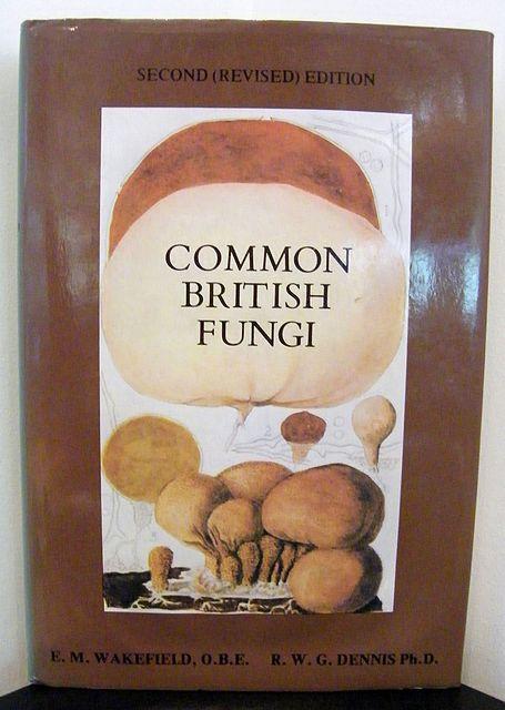 Common British Fungi