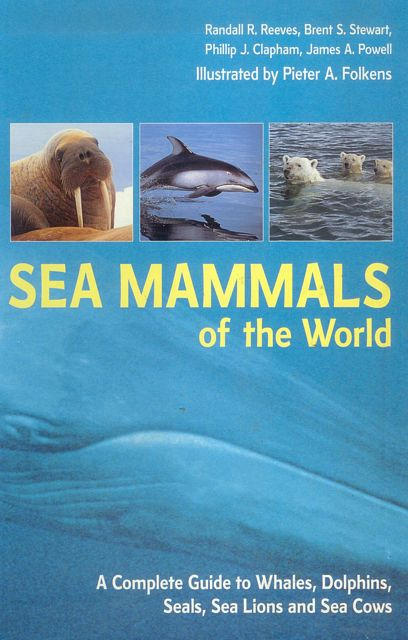 the sea james reeves essay