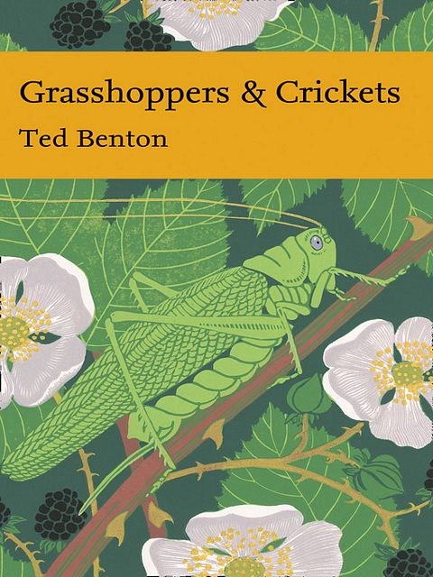 Grasshoppers and Crickets.
