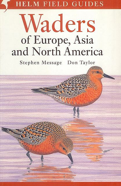 Waders of Europe, Asia and North America.
