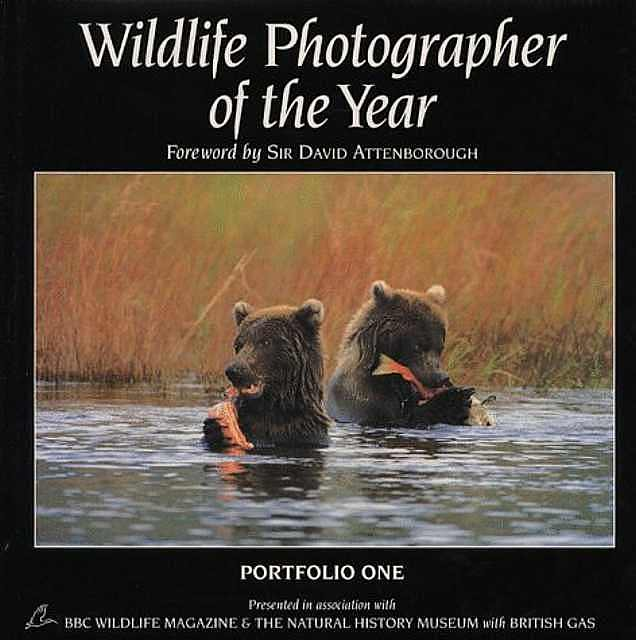 Wildlife Photographer of the Year.