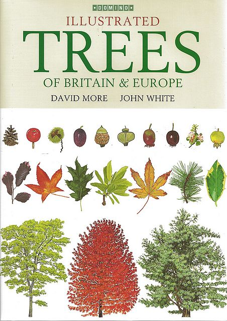 Illustrated Trees of Britain and Europe.