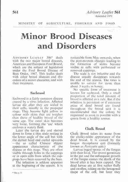 Minor Brood Diseases and Disorders.