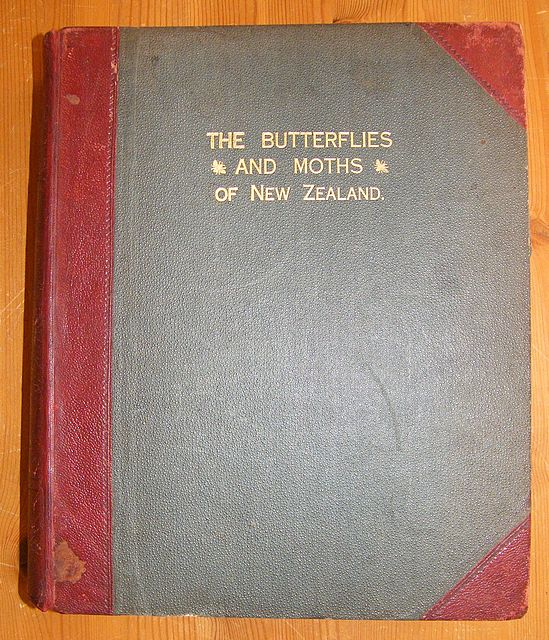 The Butterflies and Moths of New Zealand.