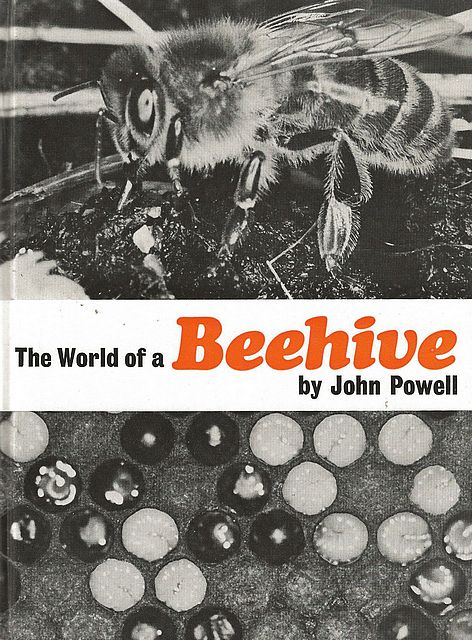 The World of a Beehive.