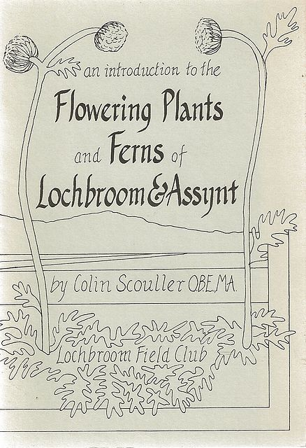 An Introduction to the Flowering Plants and Ferns of Lochbroom & Assynt.