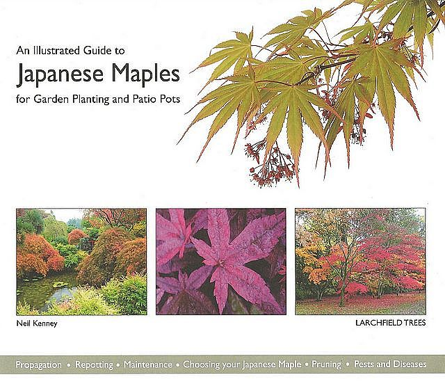 An Illustrated Guide to Japanese Maples.