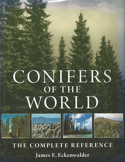 Conifers of the World.