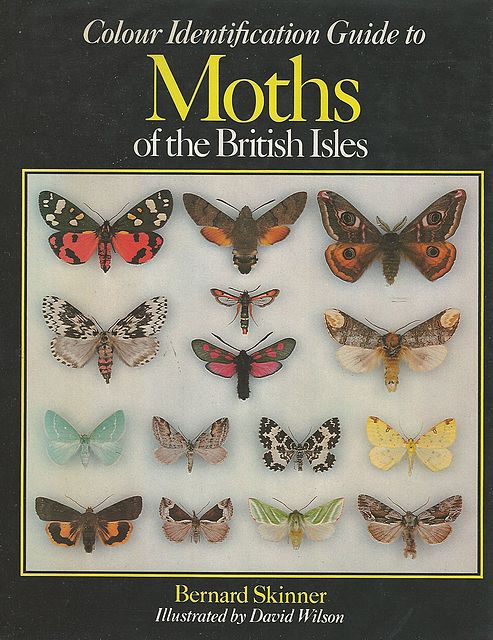 Colour Identification Guide to Moths of the British Isles.