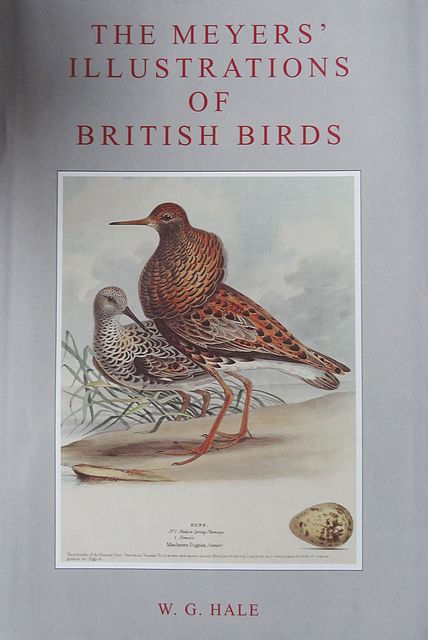The Meyers' Illustrations of British Birds.