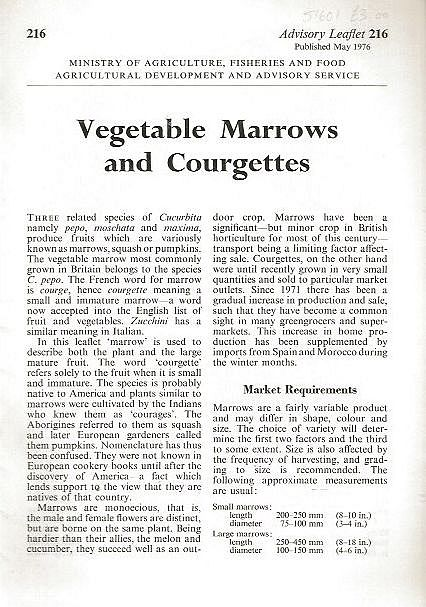 Vegetable Marrows and Courgettes.
