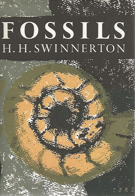 Fossils.