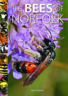 The Bees of Norfolk.