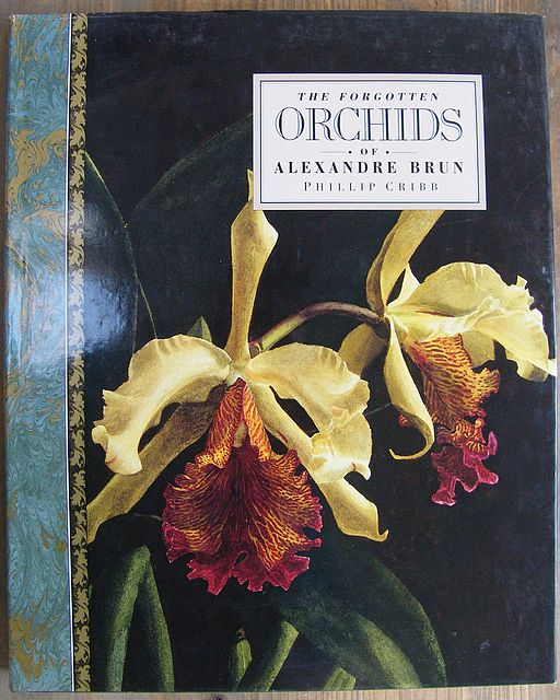 The Forgotten Orchids of Alexandre Brun.