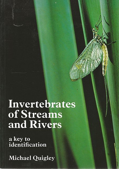 Invertebrates of Streams and Rivers.