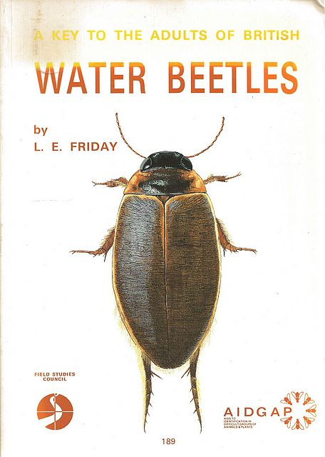 A Key to the Adults of British Water Beetles.