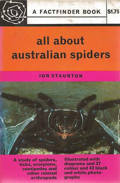 All About Australian Spiders.