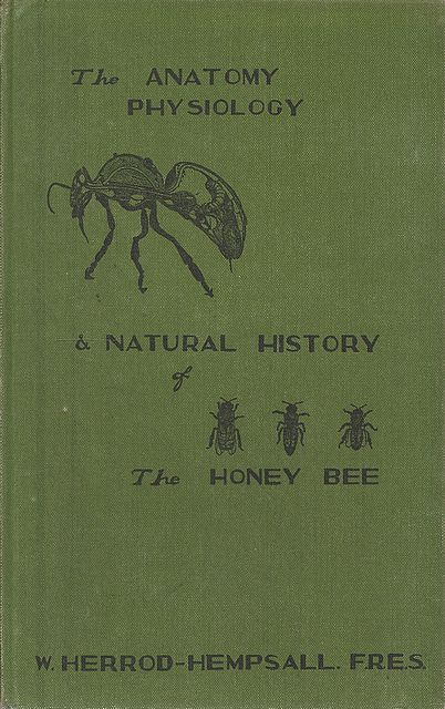 The Anatomy, Physiology and Natural History of the Honey Bee.