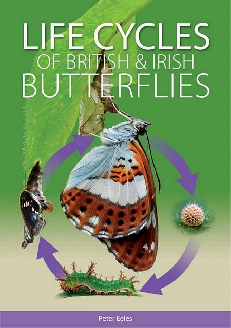 Life Cycles of British & Irish Butterflies.