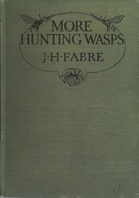 More Hunting Wasps.