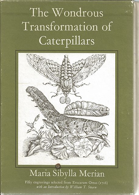 The Wondrous Transformations of Caterpillars.