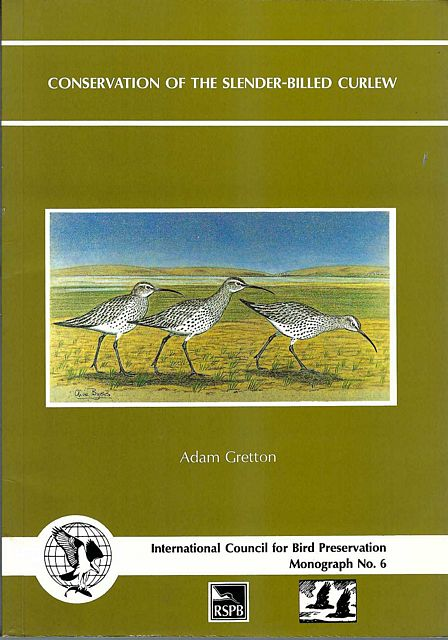 The Ecology and Conservation of the Slender-Billed Curlew (Numenius Tenuirostris).