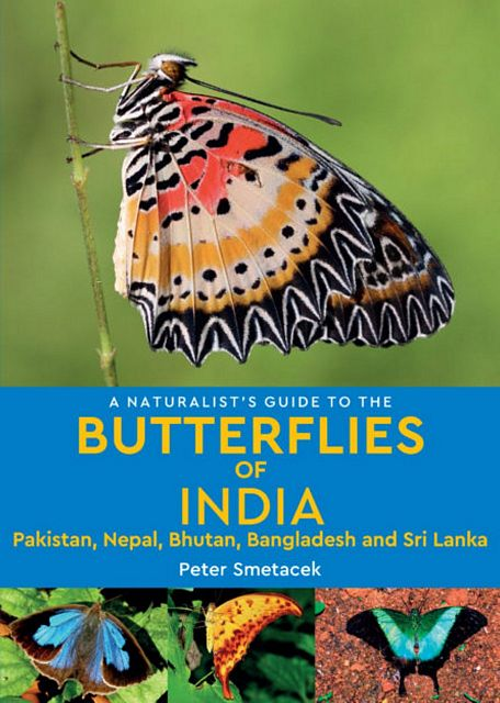 A Naturalist's Guide to the Butterflies of India,