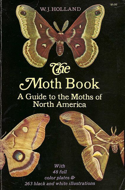 The Moth Book.