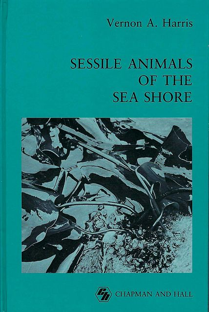 Sessile Animals of the Sea Shore.