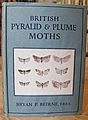 British Pyralid and Plume Moths.