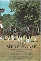 The Shire Horse.